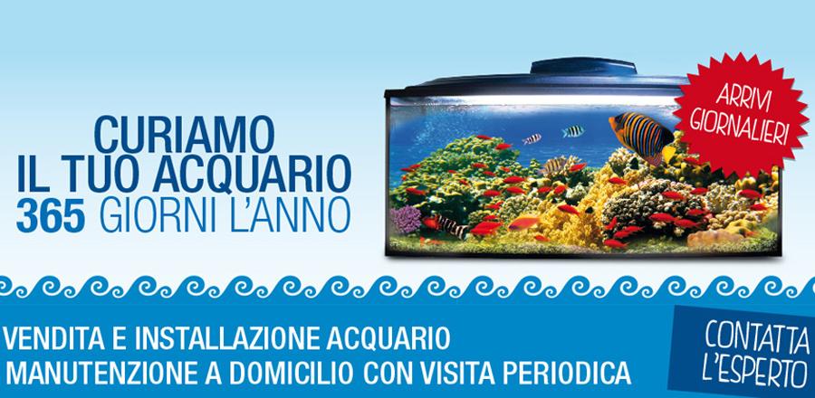 Zoomiguana Megstore Animali Campania Napoli Slide Banner HOME 2