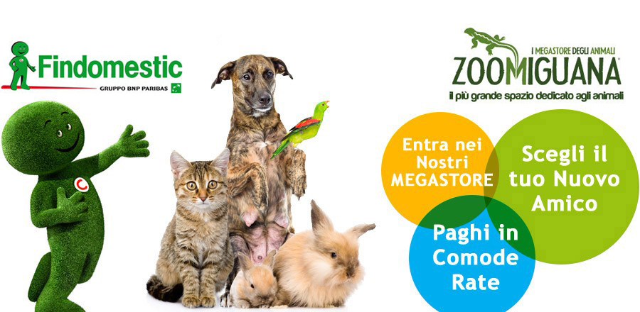 Zoomiguana Megstore Animali Campania Napoli Slide Banner HOME 6