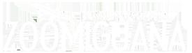Zoomiguana Logo