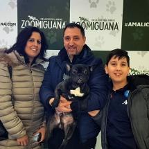 testimonianza-bulldog-casoria (1)